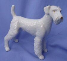 """9"""" Airedale Irish Welsh Lakeland fox terrier Hungary dog"""