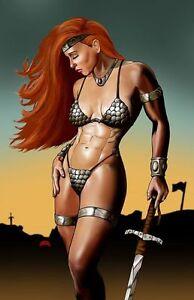 Warrior Queen fantasy sword comic art armor knight 11x17 pinup print Dan DeMille