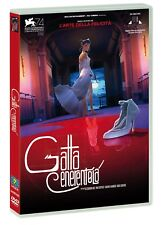 Gatta Cenerentola DVD CDE