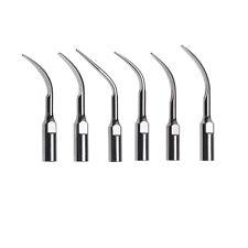6 dentale punta scaler ad ultrasuoni per SATELEC DTE GD1-GD6 model