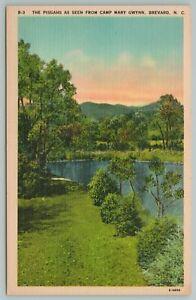 Brevard North Carolina~Pisgah Mts From Camp Mary Gwynn~Vintage Postcard