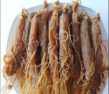 1500gr, TOP BULK KOREAN RED PANAX GINSENG ROOT, 5-6 years.3.3lbs free shipping