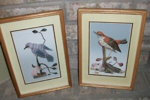 VINTAGE UNIQUE SET OF 2 BIRD PRINTS PICTURES MADE WITH BIRD FEATHERS WOOD FRAME