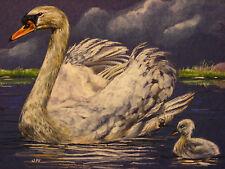 Swan bird wildlife print of painting