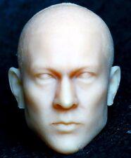 """1/6 scale plastic unpainted action figure head sculpt andy lau 12"""""""