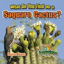 What Do You Find on a Saguaro Cactus? (Ecosystems Close-Up)-ExLibrary
