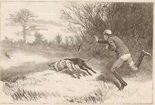 """Coursing. Greyhounds. Hare. """"The Slip"""" Harper's Weekly 1874"""