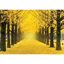 1000Piece Jigsaw Puzzle Yellow Gingko Trees Boulevard PK1000-3160