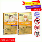 Advocate for Cats Flea Heartworm and Worm treatment All Sizes 3 Pipettes