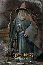 The Lord of the Rings LOTR Gandalf The Grey Ian McKellen 1/6 Figure HOBT04 ASMUS