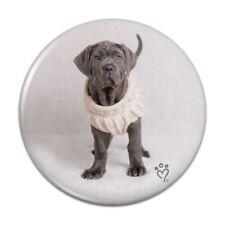 Neapolitan Mastiff Dog Nifty Sweater Compact Pocket Purse Hand Makeup Mirror