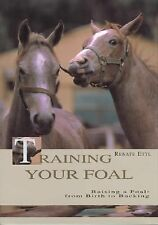 Training Your Foal by Renate Ettl (2003, Hardcover)
