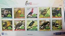 RU) 2020, COLOMBIA, RISARALDA, BIRDS IN THE SANCTUARY OF RISARALDA,  BIRD FESTI