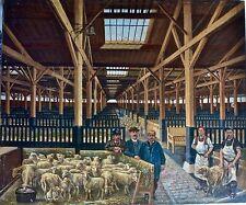 """""""Hangar à Moutons"""" Huile sur toile 1898"""