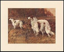 BORZOI DOGS IN RURAL SETTING LOVELY DOG PRINT MOUNTED READY TO FRAME