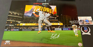 Trent Grisham Padres Auto Signed 16x20 Photo Beckett WITNESS COA Fernando Tatis
