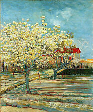 Art Oil painting Vincent Van Gogh - Orchard in Blossom in spring canvas