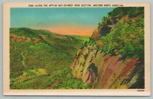 Chimney Rock Section North Carolina~View Along Appian Way~Vintage Postcard