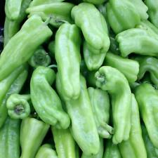 Cubanelle Sweet Pepper Vegetable Seeds 50+ NON-GMO USA SELLER FREE SHIPPING