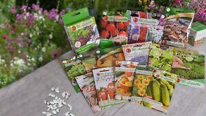 Vegetable And Flower Seeds. Spring Variation.