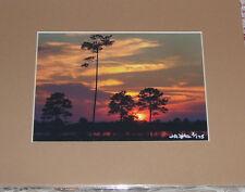 PHOTO ART SUNSET OVER GULF PANAMA CITY FL 5X7 MATTED 8X10 SIGNED #3/175
