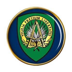Supreme Headquarters Allied Poderes Europa Forma Pin Insignia