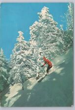 Downhill Skiing, Challenging New England's Steep Slopes, 1977 Chrome Postcard