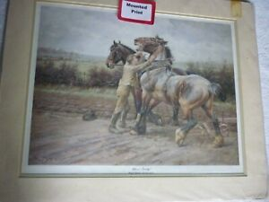 Whoa! Steady! by Wright Barker heavy horse , mounted print for framing