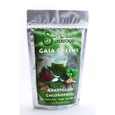 SARVAA SUPERFOOD Gaia Greens - Organic Vegan Raw Green Superfood Powder 6oz