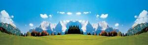 FALLER 180513 H0, Modellhintergrund Gebirge 320x97cm Grundpreis 1qm=7,39 Euro