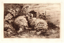 "Remarkable Thomas Sidney Cooper 1800s Antique Etching ""Cuddly Sheep"" Framed COA"