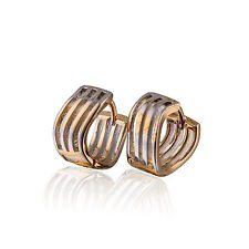 Luxury 18 k Gold Plated & Platinum plated Small Hoops Earrings E610