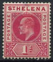 St. Helena 1902 SG#54, 1d Carmine KEVII MH #D23997