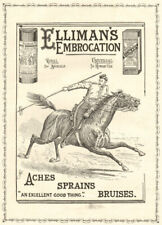 """Elliman's embrocation. """"An excellent good thing"""". ADVERT. Lancer Horse 1896"""