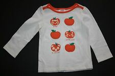 New Gymboree Owl Bear Kitty Pumpkin Top Sz 18-24M NWT Happy Harvest Glow in Dark