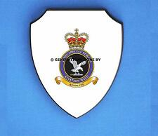 JOINT SPECIAL FORCES AVIATION WING WALL SHIELD (FULL COLOUR)