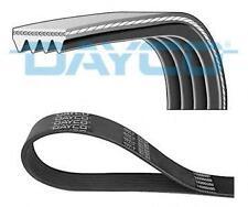 Dayco POLY scanalate Cintura 4PK1025 4 nervature 1025mm ausiliario VENTOLA ALTERNATORE
