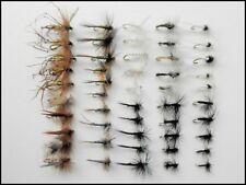 Summer Trout Fishing Flies, 50 Dry Flies, Named Varieties & mixed sizes