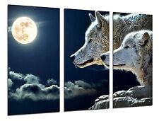 Cuadro Moderno Fotografico Lobos con Luna Llena, 97 x 62 cm ref. 26314
