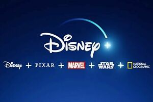 Disney Plus | 1 Year Subscription Access | 1 Year Warranty | Instant Delivery