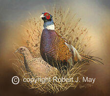 Limited Edition of 50 Pair of Pheasants Prints by Robert J. May