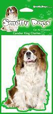 2 x Cavalier King Charles Spaniel (b)  Air Freshener  - Perfect Gift