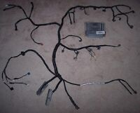 standalone wiring harness rewire and pcm tune included ls1 LQ4 Engine