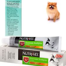 Dog Toothpaste Enzymatic Non-Foaming Dental Care Teeth Health Treatment