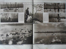 1930 3 articoli CACCIA IN PADULE TOSCANA CANI CACCIATORI DI GERMANI SELVAGGINA