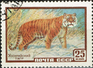 Russia Fauna Wild Animals Siberian Tiger in snow stamp 1958 A-11