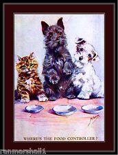 Picture Print Tabby Kitten Cat Scottish Sealyham Terrier Puppy Dog Art Poster