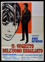Manifesto El Secreto Del Hombre Hazel Anne Heywood Harry Andrews M244