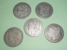 5 Morgan Silver Dollars 1884 Philadelphia Circulated