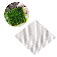 10Pcs Moss Wire Mesh Pad Aquarium Plants Live Cultivation Mat Size 5x5cm